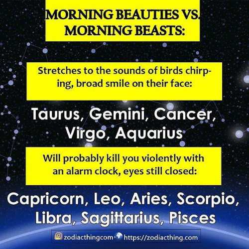the sounds: MORNING BEAUTIES VS  MORNING BEASTS:  Stretches to the sounds of birds chirp-  ing, broad smile on their face:  Taurus, Gemini, Cancer,  Virgo, Aquarius  Will probably kill you violently with  an alarm clock, eyes still closed:  Capricorn, Leo, Aries, Scorpio,  Libra, Sagittarius, Pisces  zodiacthingcomhttps://zodiacthing.com