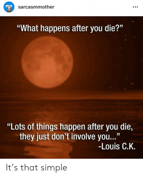 """Memes, 🤖, and Simple: MOS  sarcasmmother  """"What happens after you die?""""  """"Lots of things happen after you die,  they just don't involve you...""""  -Louis C.K. It's that simple"""