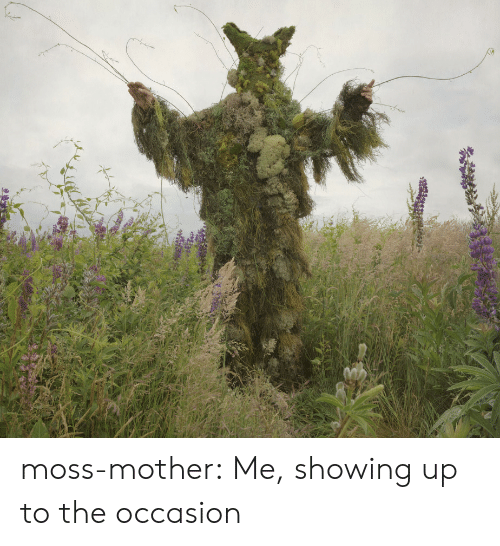 Tumblr, Blog, and Mother: moss-mother: Me, showing up to the occasion