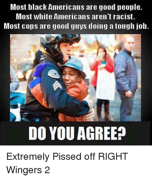 Tough Job: Most black Americans are good people.  Most white Americans aren't racist.  Most cops are good guys doing a tough job.  DO YOU AGREE? Extremely Pissed off RIGHT Wingers 2