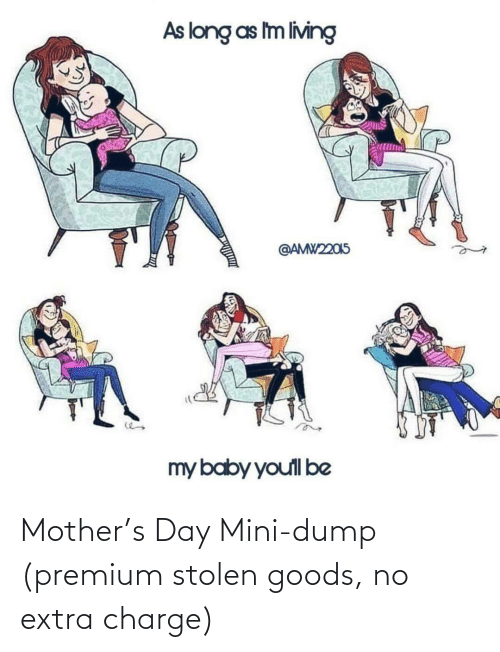 extra: Mother's Day Mini-dump (premium stolen goods, no extra charge)