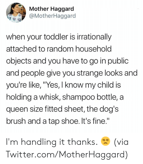 "Fitted: Mother Haggard  @MotherHaggard  when your toddler is irrationally  attached to random household  objects and you have to go in public  and people give you strange looks and  you're like, ""Yes, I know my child is  holding a whisk, shampoo bottle, a  queen size fitted sheet, the dog's  brush and a tap shoe. It's fine."" I'm handling it thanks. 😒  (via Twitter.com/MotherHaggard)"