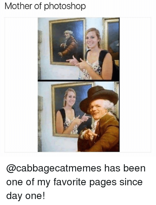 Photoshoper: Mother of photoshop @cabbagecatmemes has been one of my favorite pages since day one!