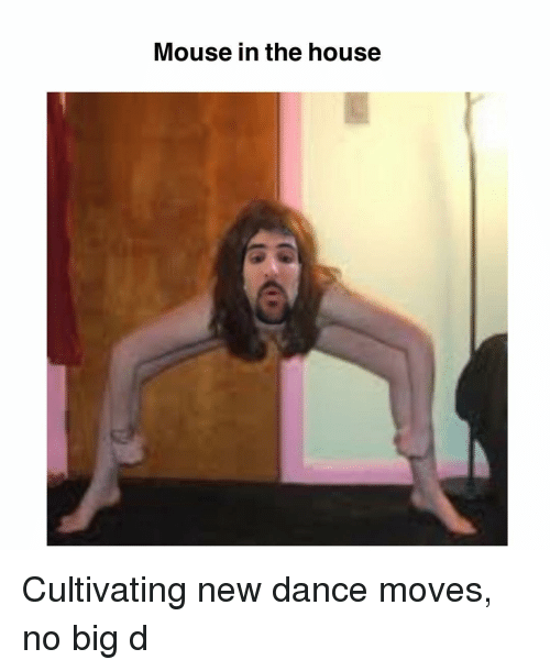 Memes, House, and Mouse: Mouse in the house Cultivating new dance moves, no big d
