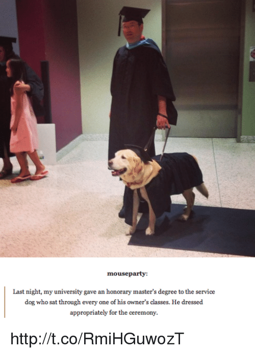 Memes, Mouse, and 🤖: mouse party:  Last night, my university gave an honorary master's degree tothe service  dog who sat through every one of his owner's classes. He dressed  appropriately for the ceremony. http://t.co/RmiHGuwozT
