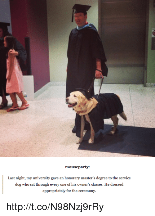 Memes, Mouse, and 🤖: mouse party:  Last night, my university gave an honorary master's degree to the service  dog who sat through every one of his owner's classes. He dressed  appropriately for the ceremony. http://t.co/N98Nzj9rRy