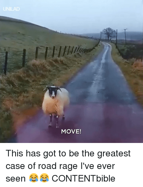 Dank, 🤖, and Got: MOVE! This has got to be the greatest case of road rage I've ever seen 😂😂  CONTENTbible