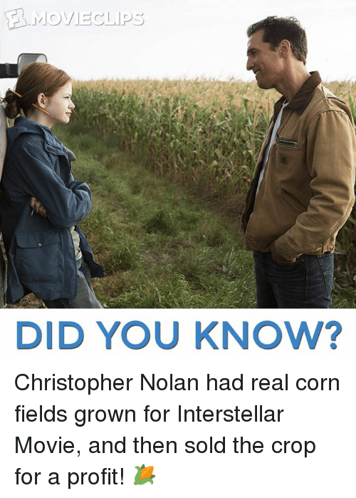 christopher nolan: MOVIE AP  DID YOU KNOW? Christopher Nolan had real corn fields grown for Interstellar Movie, and then sold the crop for a profit! 🌽