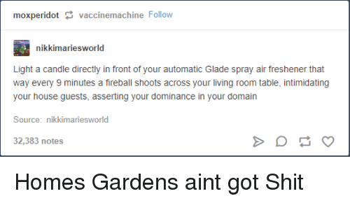 domain: moxperidotvaccinemachine Follow  nikkimariesworld  Light a candle directly in front of your automatic Glade spray air freshener that  way every 9 minutes a fireball shoots across your living room table, intimidating  your house guests, asserting your dominance in your domain  Source: nikkimariesworld  32,383 notes Homes  Gardens aint got Shit