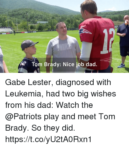 Dad, Memes, and Patriotic: MP  Tom Brady: Nice job dad. Gabe Lester, diagnosed with Leukemia, had two big wishes from his dad: Watch the @Patriots play and meet Tom Brady.  So they did. https://t.co/yU2tA0Rxn1