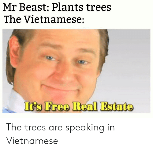 Real Estate: Mr Beast: Plants trees  The Vietnamese:  It's Free Real Estate The trees are speaking in Vietnamese