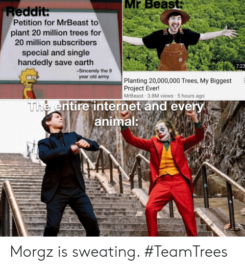 petition: Mr Beast:  Reddit:  Petition for MrBeast to  plant 20 million trees for  20 million subscribers  special and single  handedly save earth  7:23  Sincerely the 9  year old army  Planting 20,000,000 Trees, My Biggest  Project Ever!  MrBeast 3.8M views 5 hours ago  The entire internet and every  animal: Morgz is sweating. #TeamTrees
