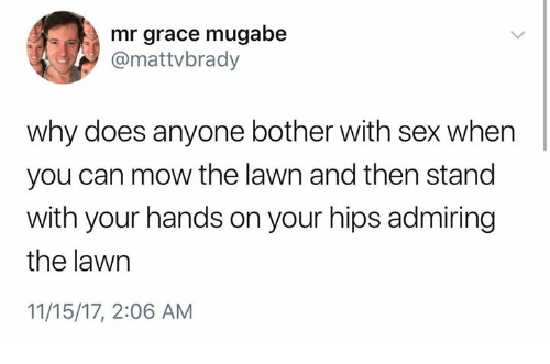 Sex, Humans of Tumblr, and Can: mr grace mugabe  @mattvbrady  why does anyone bother with sex when  you can mow the lawn and then stand  with your hands on your hips admiring  the lawn  11/15/17, 2:06 AM