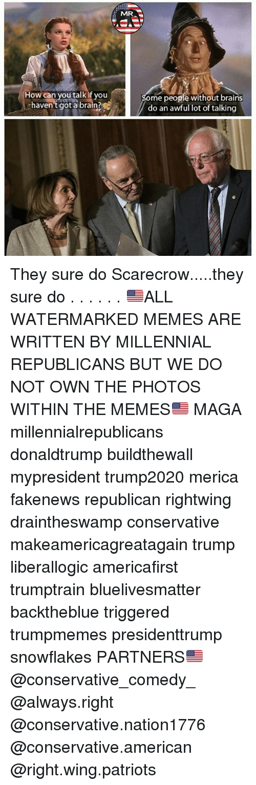 Brains, Memes, and Patriotic: MR  How can you talk if you  haven't got a brain?  ome people without brains  do an awful lot of talking They sure do Scarecrow.....they sure do . . . . . . 🇺🇸ALL WATERMARKED MEMES ARE WRITTEN BY MILLENNIAL REPUBLICANS BUT WE DO NOT OWN THE PHOTOS WITHIN THE MEMES🇺🇸 MAGA millennialrepublicans donaldtrump buildthewall mypresident trump2020 merica fakenews republican rightwing draintheswamp conservative makeamericagreatagain trump liberallogic americafirst trumptrain bluelivesmatter backtheblue triggered trumpmemes presidenttrump snowflakes PARTNERS🇺🇸 @conservative_comedy_ @always.right @conservative.nation1776 @conservative.american @right.wing.patriots