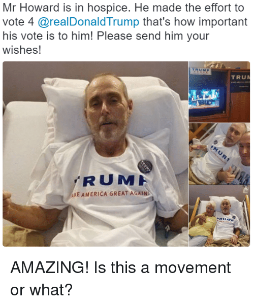 America, Memes, and Amaz: Mr Howard is in hospice. He made the effort to  vote 4  @realDonald Trump that's how important  his vote is to him! Please send him your  wishes!  TRUM  AXE AMERICA GREAT AGAIN AMAZING! Is this a movement or what?
