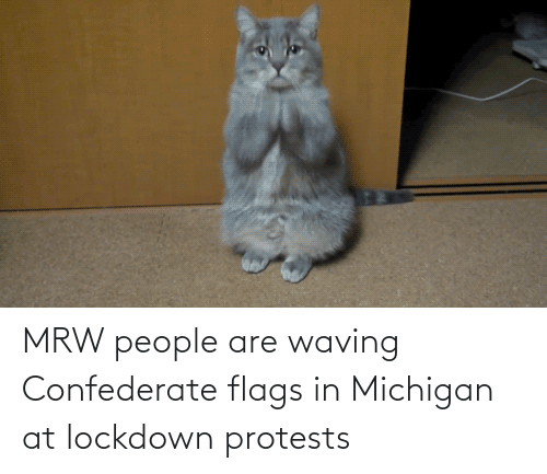 People Are: MRW people are waving Confederate flags in Michigan at lockdown protests
