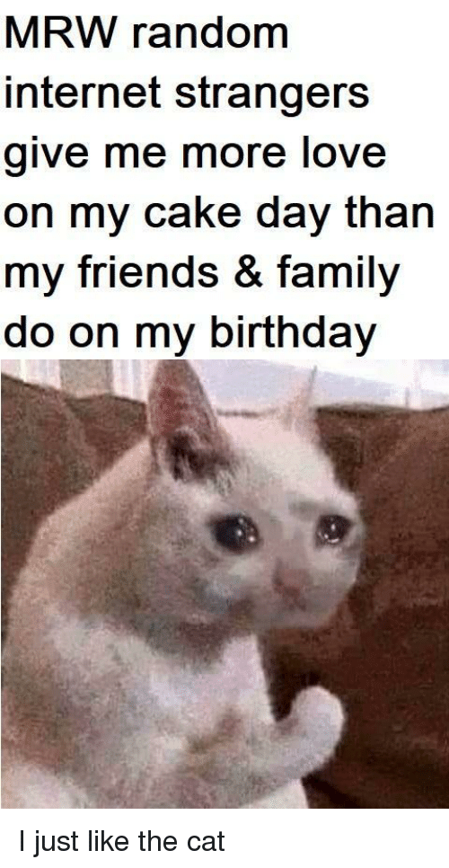 MRW: MRW random  internet strangers  give me more love  on my cake day than  my friends & family  do on my birthday I just like the cat