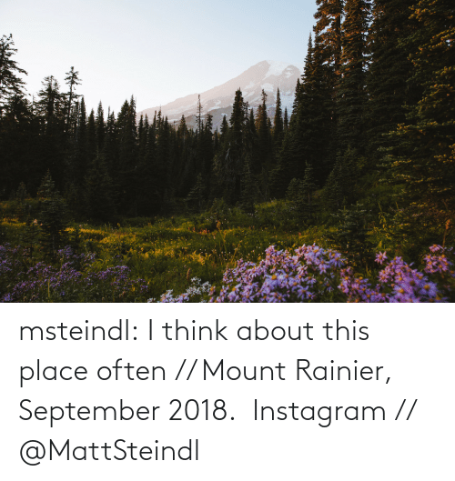 From: msteindl: I think about this place often // Mount Rainier, September 2018.    Instagram // @MattSteindl