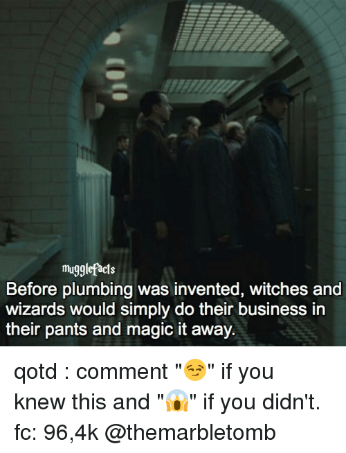"""Facts, Memes, and Business: muggle facts  Before plumbing was invented, witches and  wizards would simply do their business in  their pants and magic it away. qotd : comment """"😏"""" if you knew this and """"😱"""" if you didn't. fc: 96,4k @themarbletomb"""