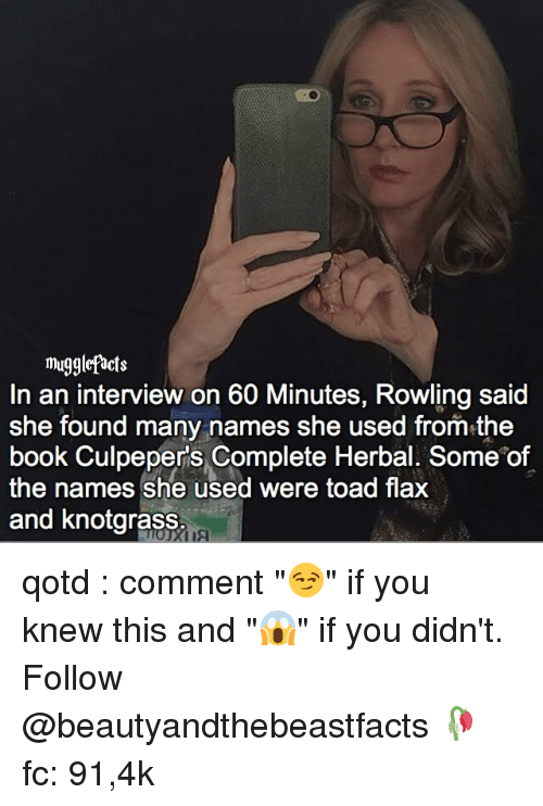 """Toade: mugglefacts  In an interview on 60 Minutes, Rowling said  She found many names she used from the  book Culpepers Complete Herbal. Some of  the names she used were toad flax  and knotgrass qotd : comment """"😏"""" if you knew this and """"😱"""" if you didn't. Follow @beautyandthebeastfacts 🥀 fc: 91,4k"""
