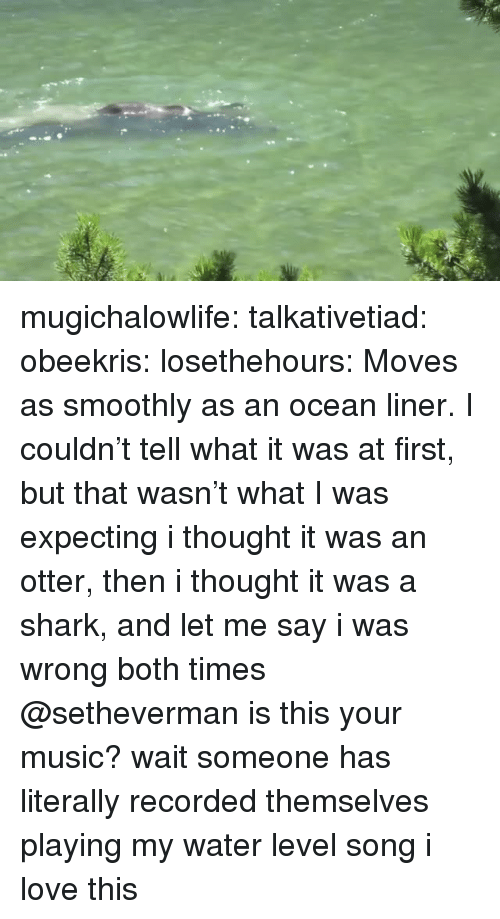 Love, Music, and Tumblr: mugichalowlife: talkativetiad:  obeekris:  losethehours: Moves as smoothly as an ocean liner.  I couldn't tell what it was at first, but that wasn't what I was expecting   i thought it was an otter, then i thought it was a shark, and let me say i was wrong both times  @setheverman is this your music?   wait someone has literally recorded themselves playing my water level song i love this