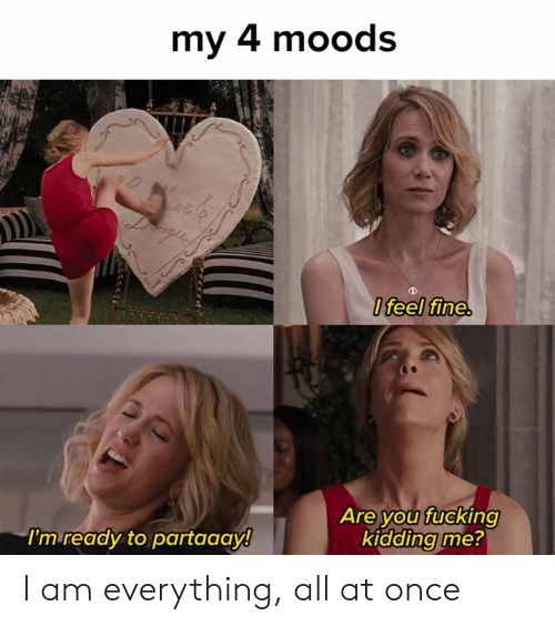 You Fucking Kidding Me: my 4 moods  Ifeel fine.  Are you fucking  kidding me?  I'm ready to partaaay! I am everything, all at once
