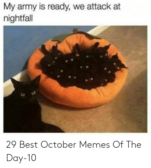memes of the day: My army is ready, we attack at  nightfall 29 Best October Memes Of The Day-10