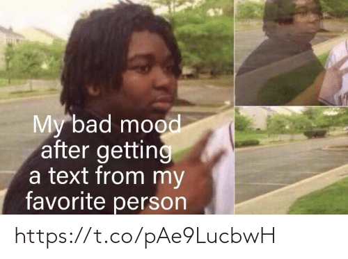 Bad, Memes, and Mood: My bad mood  after getting  a text from my  favorite person https://t.co/pAe9LucbwH