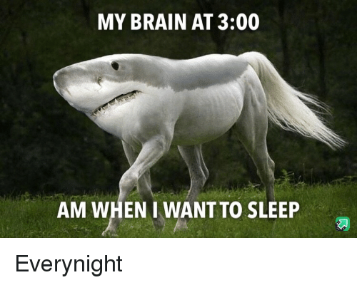 I Want To Sleep: MY BRAIN AT 3:00  AM WHEN I WANT TO SLEEP Everynight