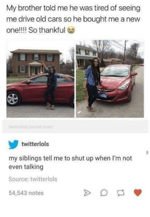 Cars, Funny, and Shut Up: My brother told me he was tired of seeing  me drive old cars so he bought me a new  one!!!! So thankful  witterolatumbir.com  twitterlols  my siblings tell me to shut up when I'm not  even talking  Source: twitterlols  54,543 notes