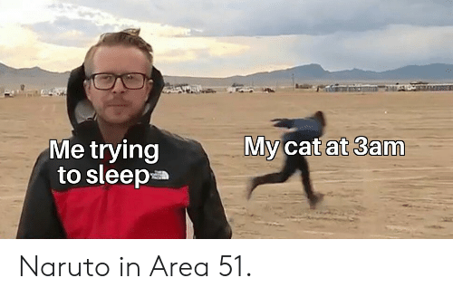 Naruto, Sleep, and Area 51: My cat at 3am  Me trying  to sleep Naruto in Area 51.