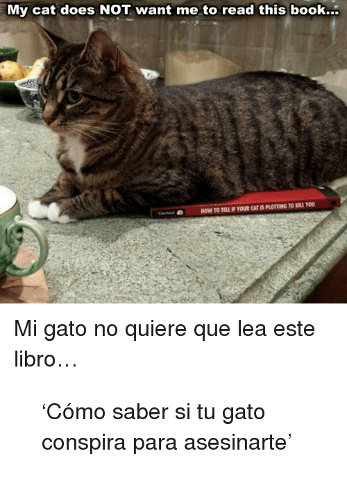 Book, How To, and How: My cat does NOT want me to read this book...  HOW TO TELL IF YOUR CAT IS PLOTTING TO KILL YOU <p>Mi gato no quiere que lea este libro…</p> <blockquote> <p>'Cómo saber si tu gato conspira para asesinarte'</p> </blockquote>