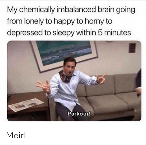 5 minutes: My chemically imbalanced brain going  from lonely to happy to horny to  depressed to sleepy within 5 minutes  Parkour! Meirl