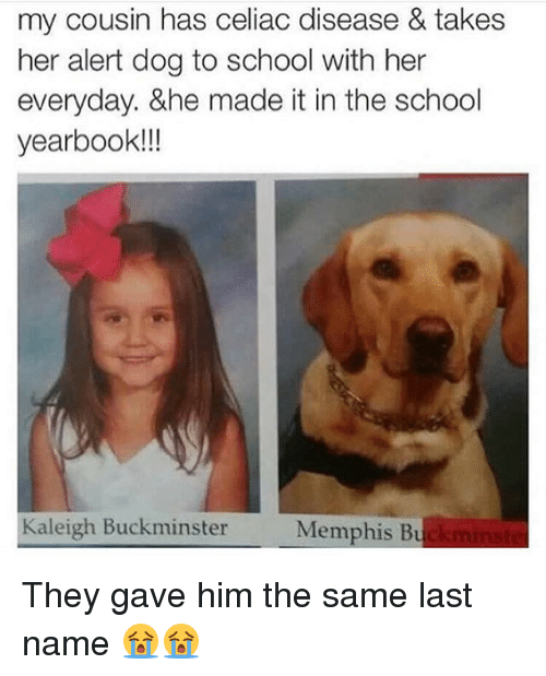 Funny, School, and Her: my cousin has celiac disease & takes  her alert dog to school with her  everyday. &he made it in the school  yearbook!!  Kaleigh Buckminster  Memphis Bu They gave him the same last name 😭😭