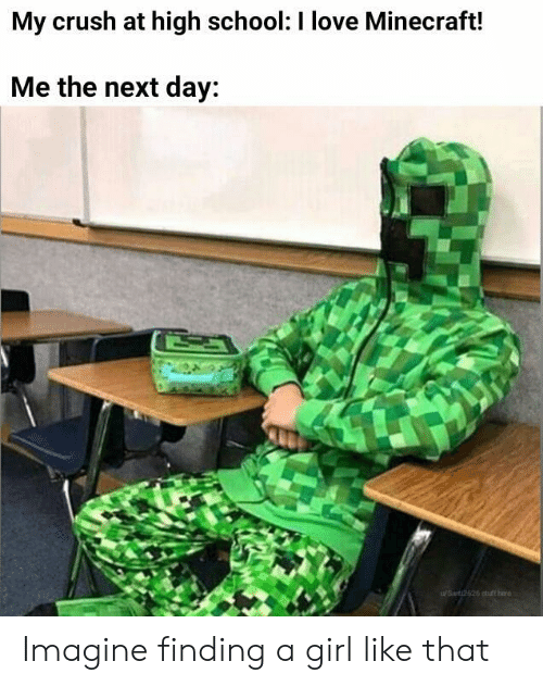 Crush, Love, and Minecraft: My crush at high school: I love Minecraft!  Me the next day:  WSant 12626 otuffhere Imagine finding a girl like that