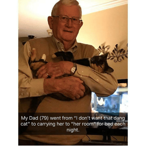 """Dad, Memes, and 🤖: My Dad (79) went from """"I don't want that dang  cat"""" to carrying her to """"her room"""" for bed each  night."""
