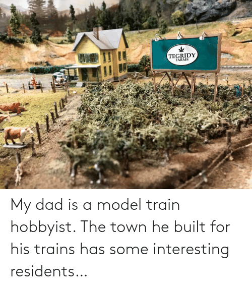 trains: My dad is a model train hobbyist. The town he built for his trains has some interesting residents…