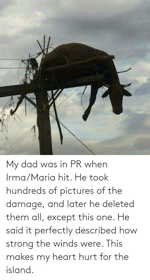 hit: My dad was in PR when Irma/Maria hit. He took hundreds of pictures of the damage, and later he deleted them all, except this one. He said it perfectly described how strong the winds were. This makes my heart hurt for the island.