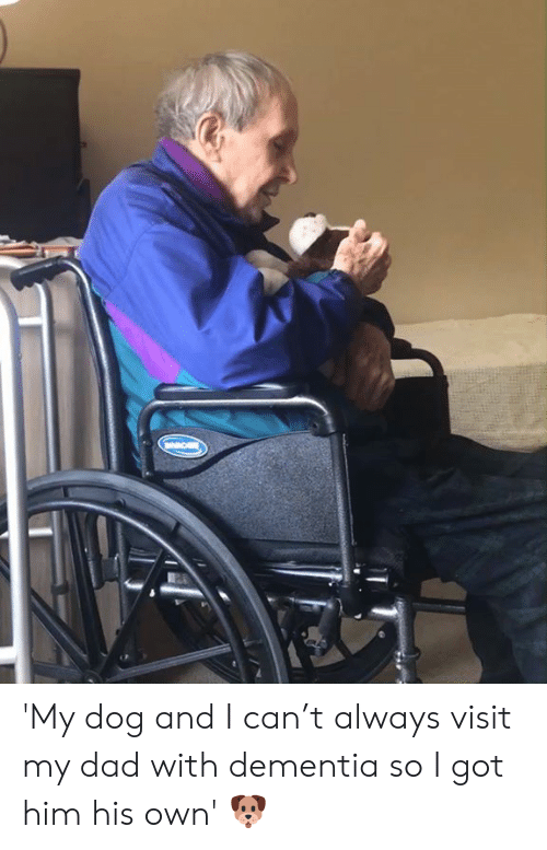 Dad, Dank, and Dementia: 'My dog and I can't always visit my dad with dementia so I got him his own' 🐶