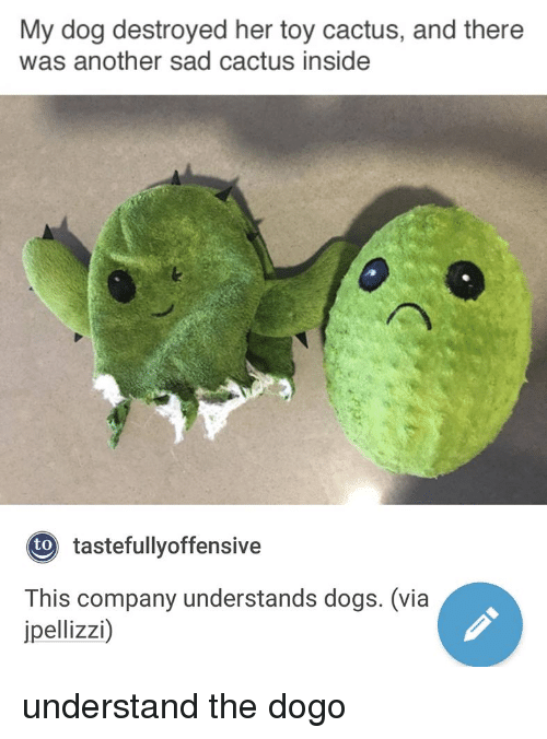 Dogs, Sad, and Another: My dog destroyed her toy cactus, and there  was another sad cactus inside  tastefullyoffensive  to  This company understands dogs. (via  jpellizzi) understand the dogo