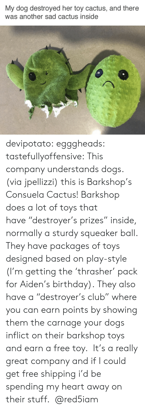 """Birthday, Club, and Dogs: My dog destroyed her toy cactus, and there  was another sad cactus inside devipotato: egggheads:  tastefullyoffensive: This company understands dogs. (via jpellizzi) this is Barkshop's Consuela Cactus! Barkshop does a lot of toys that have""""destroyer's prizes"""" inside, normally a sturdy squeaker ball. They have packages of toys designed based on play-style (I'm getting the'thrasher' pack for Aiden's birthday). They also have a""""destroyer's club"""" where you can earn points by showing them the carnage your dogs inflict on their barkshop toys and earn a free toy. It's a really great company and if I could get free shipping i'd be spending my heart away on their stuff.   @red5iam"""