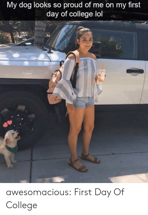 College, Lol, and Tumblr: My dog looks so proud of me on my first  day of college lol awesomacious:  First Day Of College