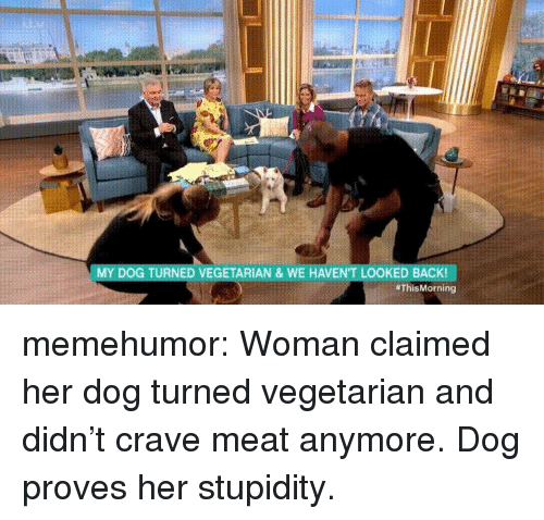 Tumblr, Blog, and Http: MY DOG TURNED VEGETARIAN & WE HAVENT LOOKED BACK!  memehumor:  Woman claimed her dog turned vegetarian and didn't crave meat anymore. Dog proves her stupidity.