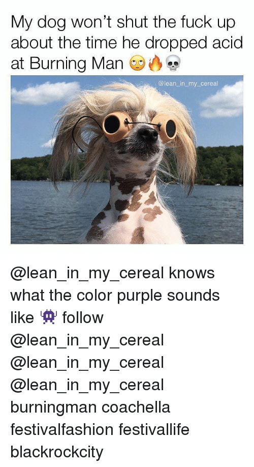 Coachella, Lean, and Memes: My dog won't shut the fuck up  about the time he dropped acid  at Burning Man  @lean_in_my cereal @lean_in_my_cereal knows what the color purple sounds like 👾 follow @lean_in_my_cereal @lean_in_my_cereal @lean_in_my_cereal burningman coachella festivalfashion festivallife blackrockcity