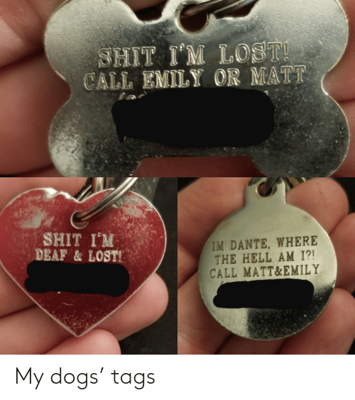 Dogs: My dogs' tags