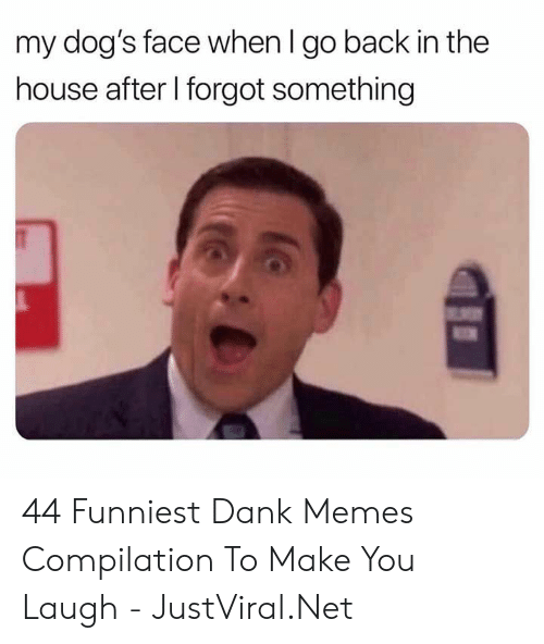 Dank Memes: my dog's face when I go back in the  house after I forgot something 44 Funniest Dank Memes Compilation To Make You Laugh - JustViral.Net