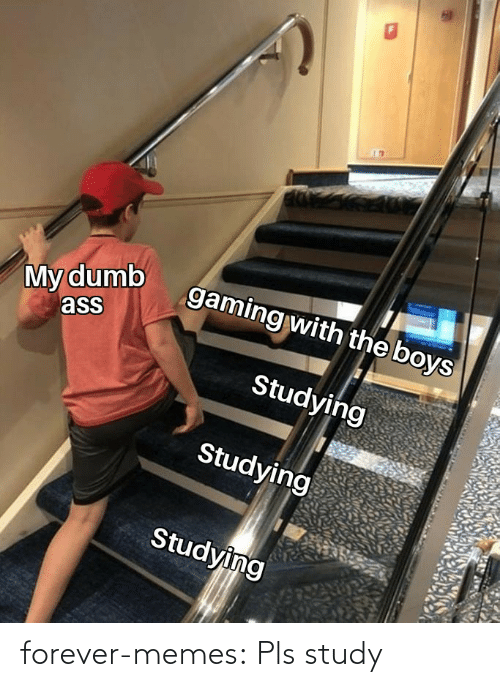 study: My dumb  ass  gaming with the boys  Studying  Studying  Studying forever-memes:  Pls study
