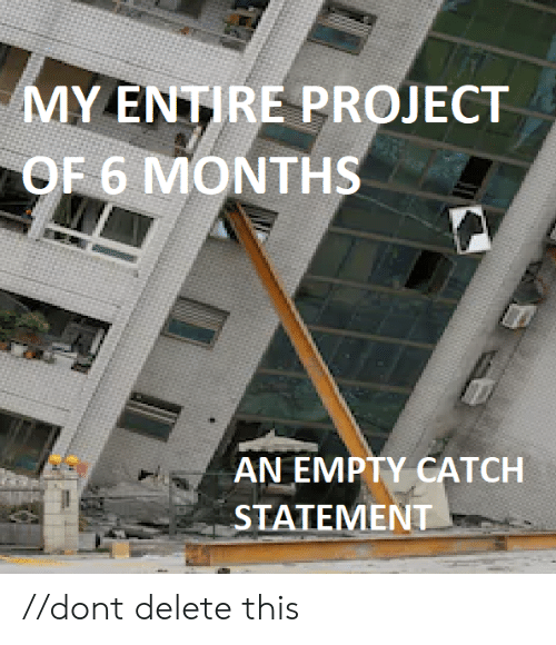 Project, Don, and Months: MY ENTIRE PROJECT  OF 6 MONTHS  AN EMPTY CATCH  STATEMENT //dont delete this