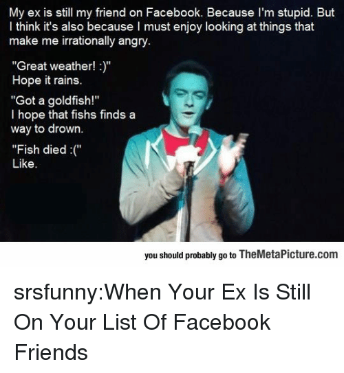 """When Your Ex: My ex is still my friend on Facebook. Because I'm stupid. But  l think it's also because I must enjoy looking at things that  make me irrationally angry  """"Great weather!""""  Hope it rains.  """"Got a goldfish!""""  l hope that fishs finds a  way to drown.  """"Fish died""""  Like.  you should probably go to TheMetaPicture.com srsfunny:When Your Ex Is Still On Your List Of Facebook Friends"""
