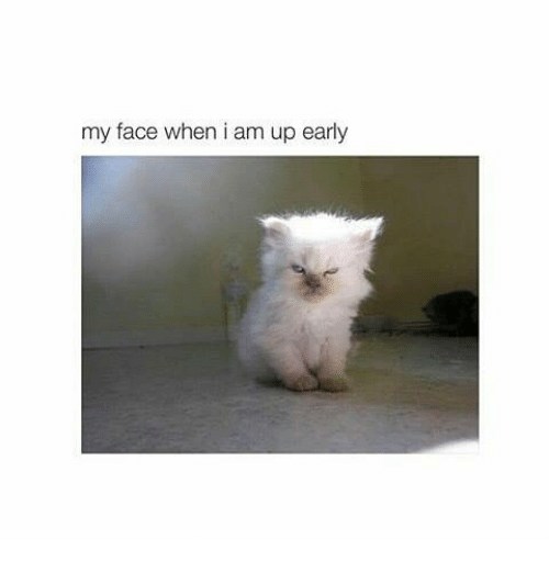 Memes, My Face When, and 🤖: my face when i am up early